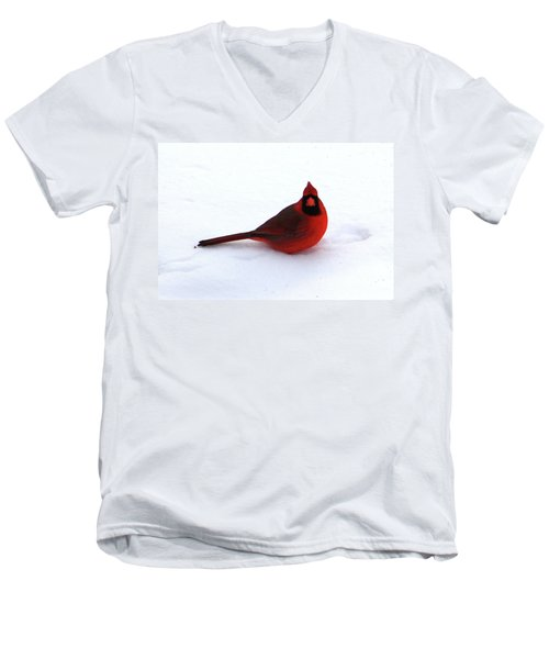 Men's V-Neck T-Shirt featuring the photograph Cold Seat by Alyce Taylor