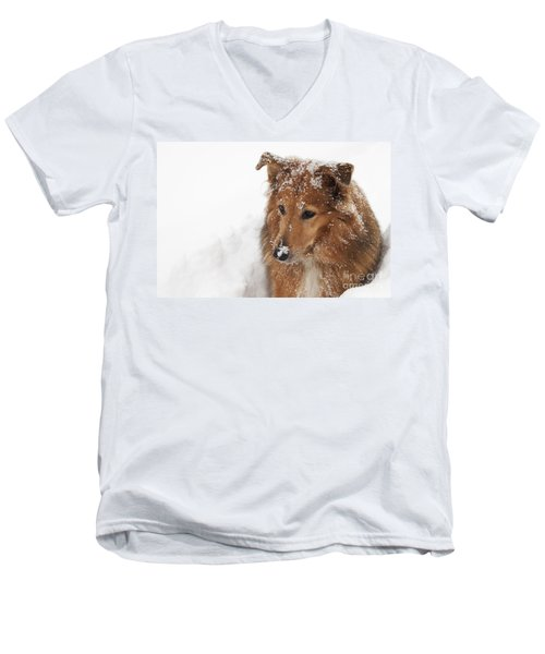 Collie In The Snow Men's V-Neck T-Shirt by Jeannette Hunt