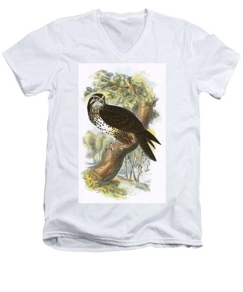 Common Buzzard Men's V-Neck T-Shirt