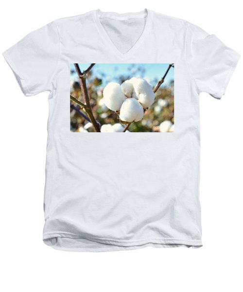 Cotton Boll Iv Men's V-Neck T-Shirt by Debbie Portwood