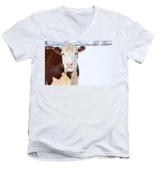 Cow - Fine Art Photography Print Men's V-Neck T-Shirt
