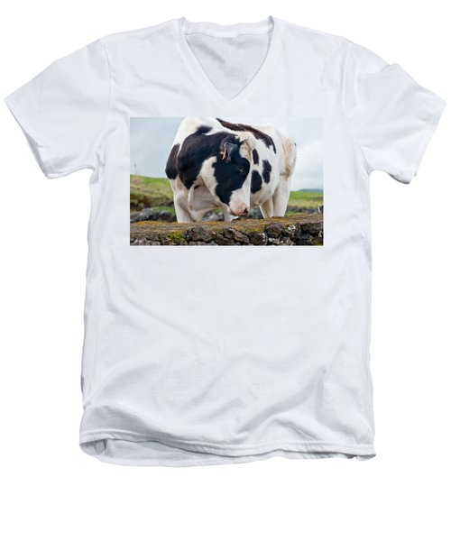 Cow With Head Turned Men's V-Neck T-Shirt