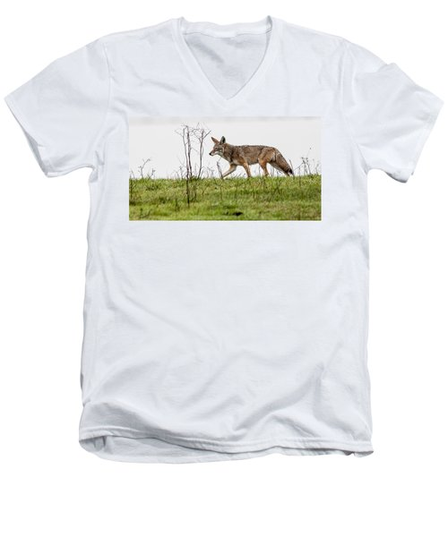 Men's V-Neck T-Shirt featuring the photograph Coyote by Brian Williamson