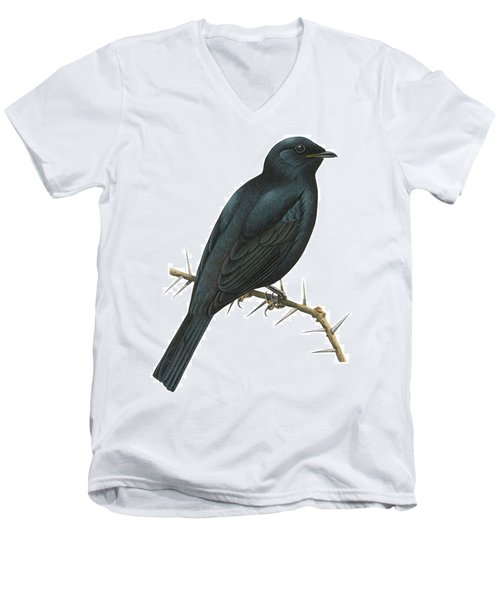 Cuckoo Shrike Men's V-Neck T-Shirt
