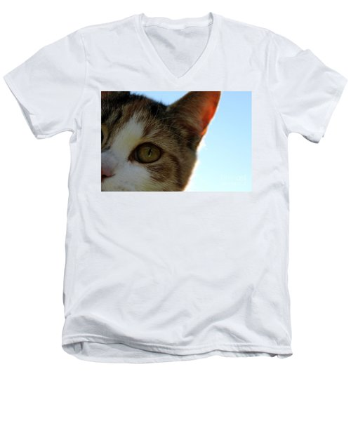 Curious Cat Men's V-Neck T-Shirt