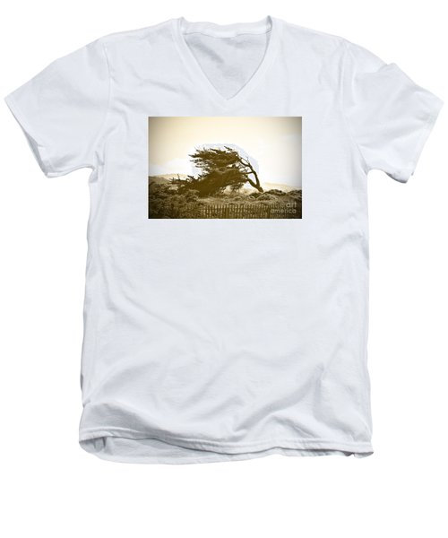 Cypress Trees In Monterey Men's V-Neck T-Shirt by Artist and Photographer Laura Wrede