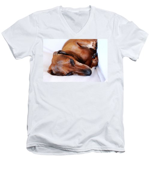 Dachshund Men's V-Neck T-Shirt