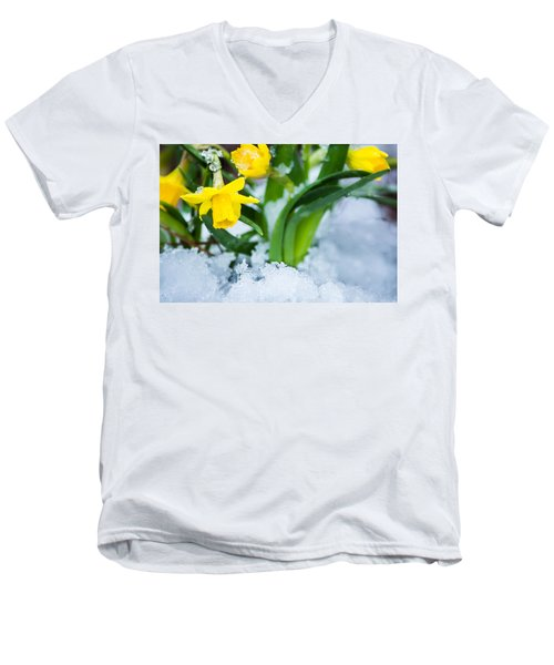 Daffodils In The Snow  Men's V-Neck T-Shirt