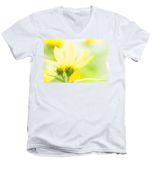 Daisies In The Sun Men's V-Neck T-Shirt