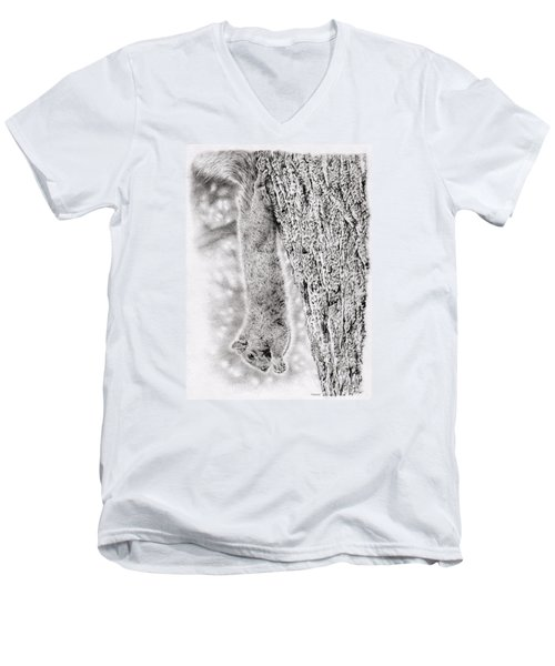 Dangling Squirrel Men's V-Neck T-Shirt