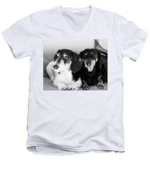Dapper Doxies Men's V-Neck T-Shirt by Erika Weber
