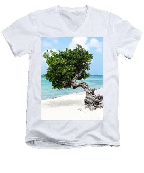 Divi Divi Tree In Aruba Men's V-Neck T-Shirt