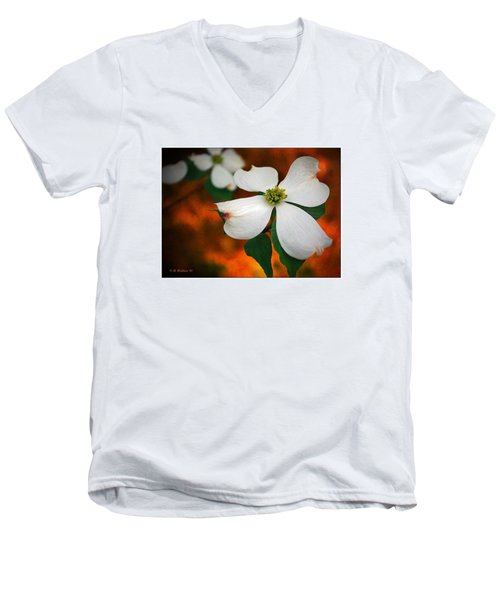 Dogwood Blossom Men's V-Neck T-Shirt by Brian Wallace