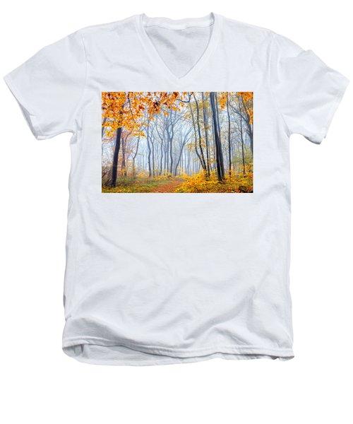 Dream Forest Men's V-Neck T-Shirt