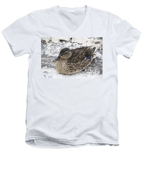Duck Setting On A Winter Road Men's V-Neck T-Shirt