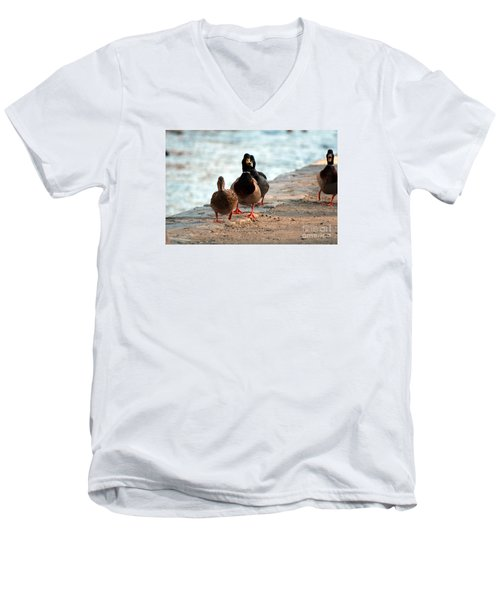 Men's V-Neck T-Shirt featuring the photograph Duck Walk by David Jackson