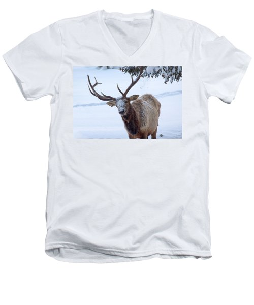 Men's V-Neck T-Shirt featuring the photograph Dumped On by Shane Bechler
