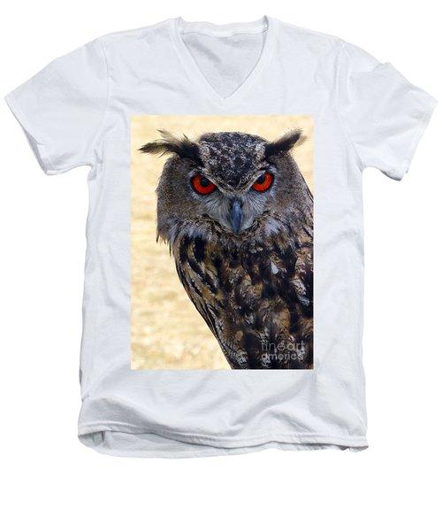 Eagle Owl Men's V-Neck T-Shirt by Anthony Sacco