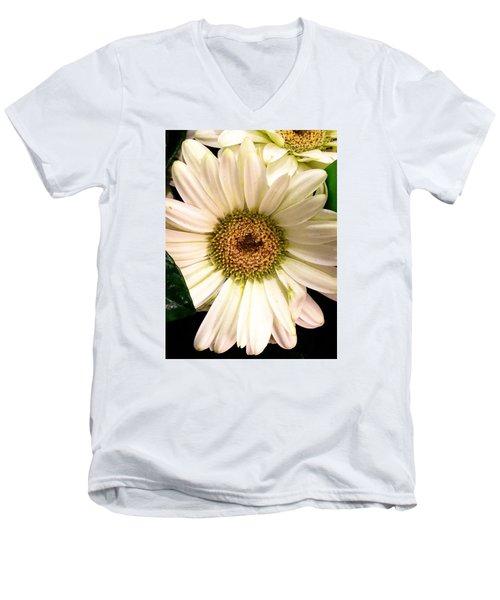 Easter 2014-2 Men's V-Neck T-Shirt by Jeff Iverson