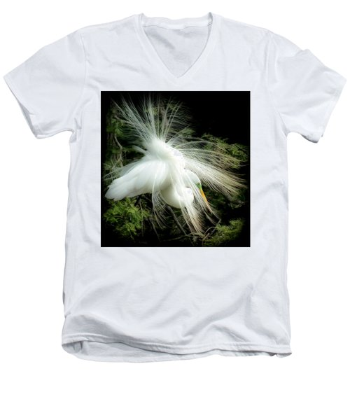 Elegance Of Creation Men's V-Neck T-Shirt