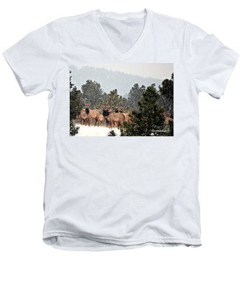 Men's V-Neck T-Shirt featuring the photograph Elk In The Snowing Open by Barbara Chichester