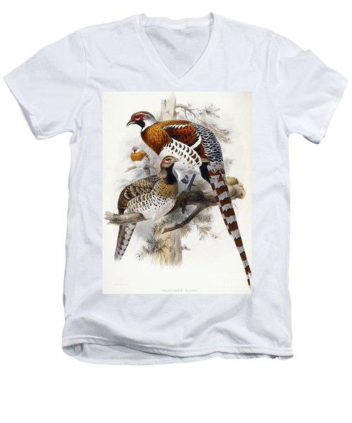 Elliot's Pheasant Men's V-Neck T-Shirt by Joseph Wolf