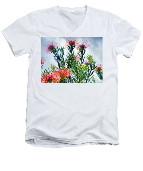 Enchanting Gardens 42 Men's V-Neck T-Shirt