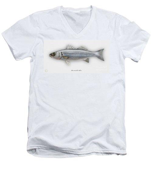 European Seabass Dicentrarchus Labrax - Bar Commun - Loup De Mer - Lubina - Havabor - Seafood Art Men's V-Neck T-Shirt