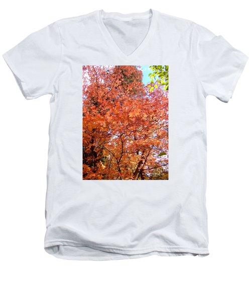 Fall Colors 6357 Men's V-Neck T-Shirt