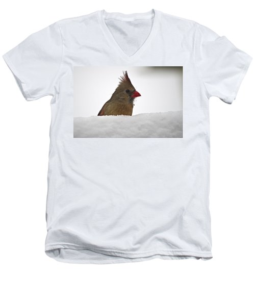 Snowy Peek-a-boo Men's V-Neck T-Shirt