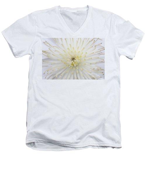 Fine Art - White Men's V-Neck T-Shirt