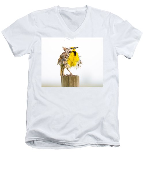 Flluffy Meadowlark Men's V-Neck T-Shirt