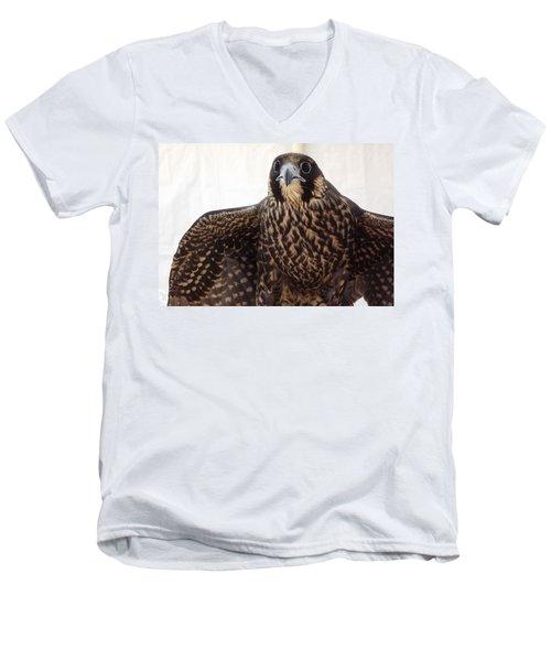 Focus Men's V-Neck T-Shirt by Richard Faulkner