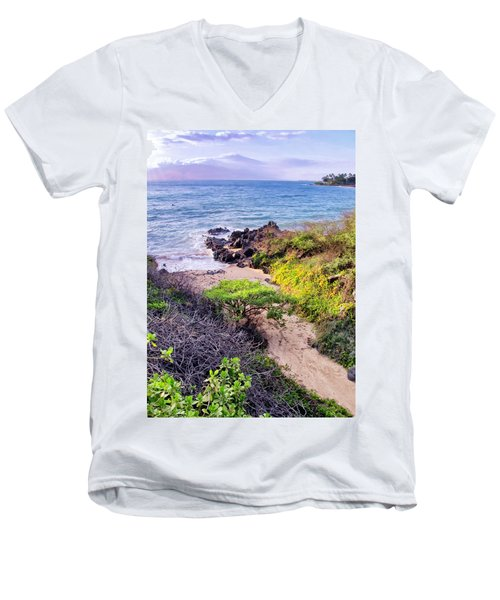 Four Seasons 125 Men's V-Neck T-Shirt