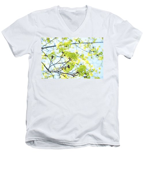 Men's V-Neck T-Shirt featuring the photograph Fresh Spring Green Buds by Brooke T Ryan