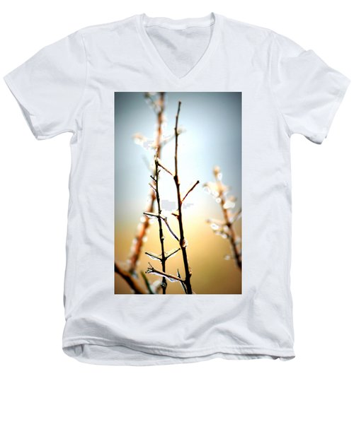 Frozen In Light Men's V-Neck T-Shirt