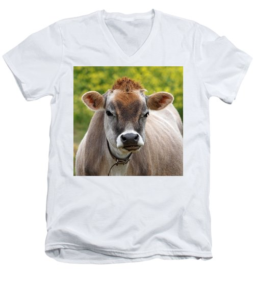 Funny Jersey Cow -square Men's V-Neck T-Shirt