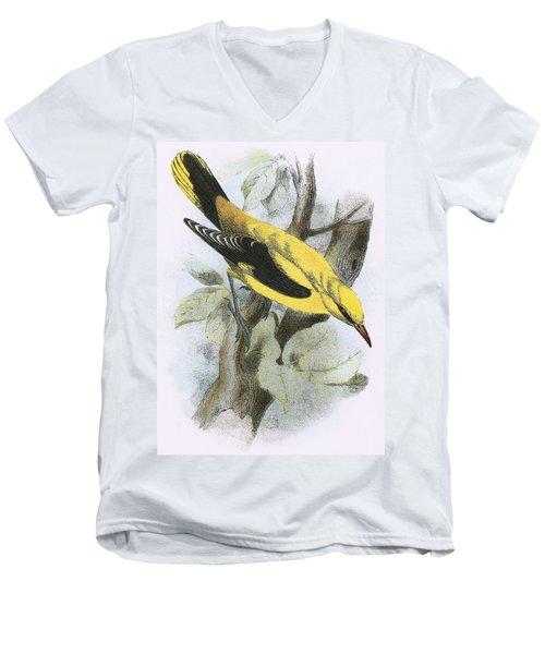 Golden Oriole Men's V-Neck T-Shirt