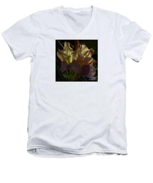 Golden Reserve Men's V-Neck T-Shirt by Jean OKeeffe Macro Abundance Art