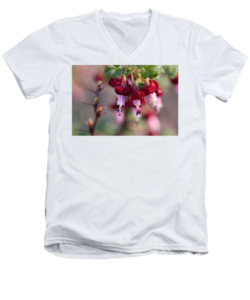 Men's V-Neck T-Shirt featuring the photograph Gooseberry Flowers by Peggy Collins