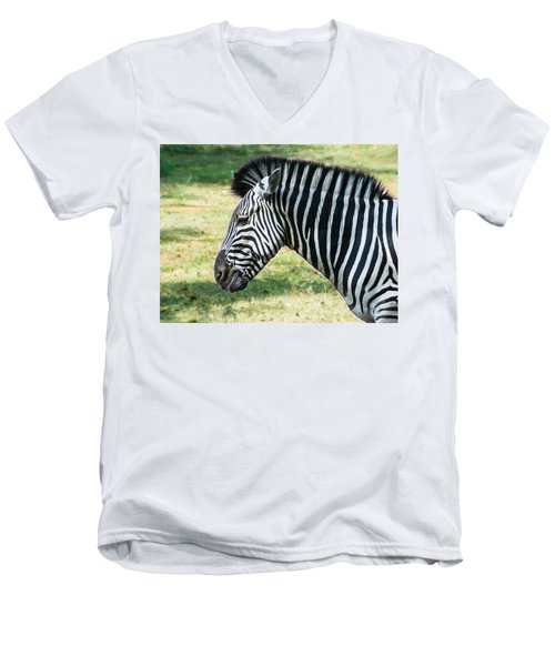Grazing Zebra Men's V-Neck T-Shirt