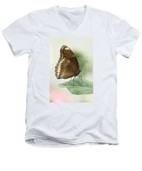 Great Eggfly Butterfly Men's V-Neck T-Shirt by Judy Whitton