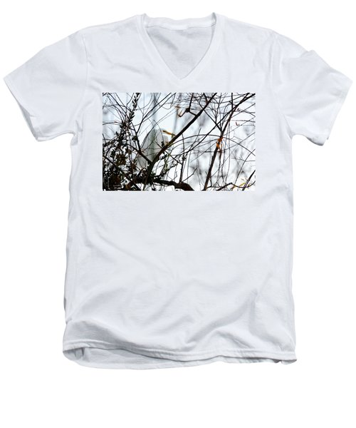 Men's V-Neck T-Shirt featuring the photograph Great Egret Roosting In Winter by Susan Wiedmann