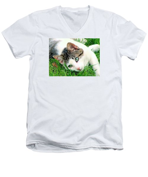 Men's V-Neck T-Shirt featuring the photograph Green Eyed Cat by Janette Boyd