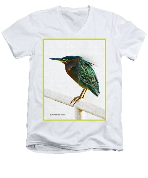 Green Heron In Scottsdale Men's V-Neck T-Shirt