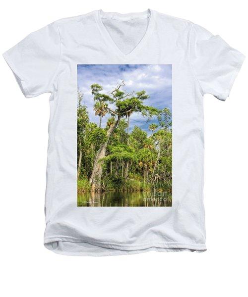 Hatrack Cypress Men's V-Neck T-Shirt