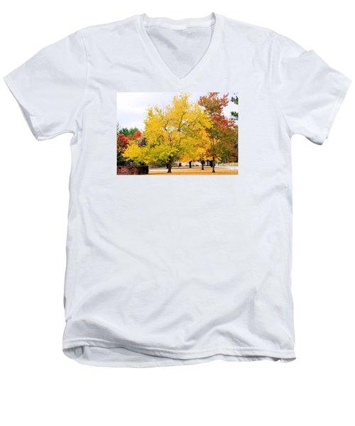 Havana Landscape Men's V-Neck T-Shirt