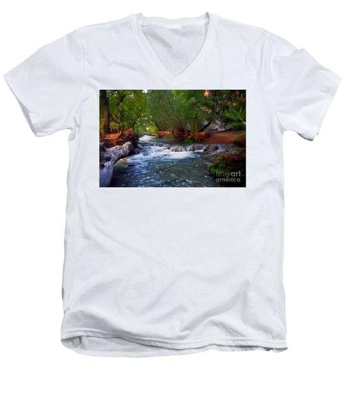 Havasu Creek Men's V-Neck T-Shirt