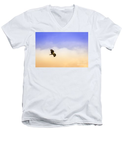 Hawk Over Head Men's V-Neck T-Shirt