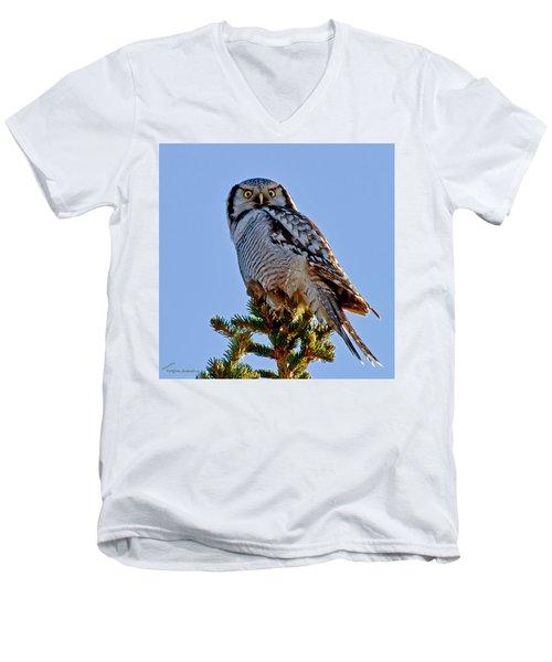 Hawk Owl Square Men's V-Neck T-Shirt by Torbjorn Swenelius